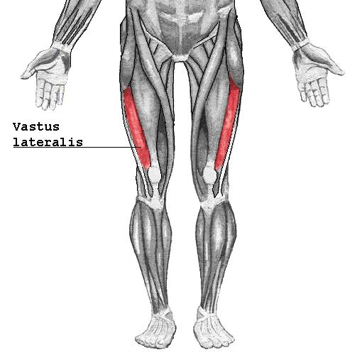 ejercicios para los músculos vasto