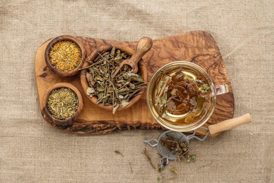 plantas medicinales populares